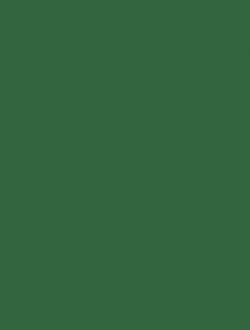 chitosemidori